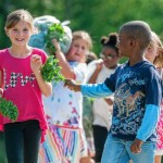 Let them eat kale: Belchertown students plant, harvest the vegetable for cafeteria