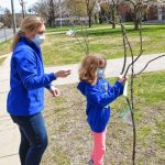 Sheffield Elementary School celebrates National Poetry Month with 'poet trees'
